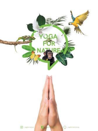 Yoga For Nature – Wie du durch deine Yogapraxis die Welt verbesserst!